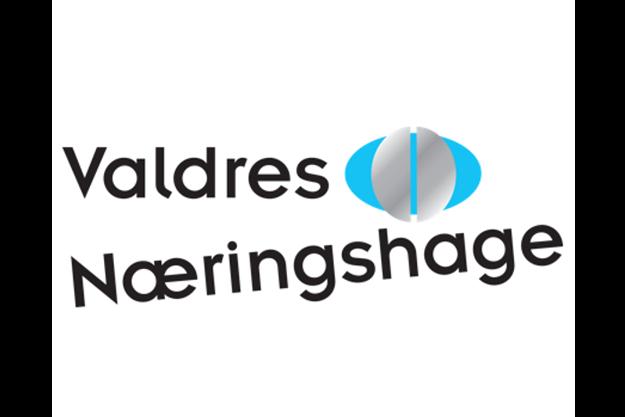 Valdres Næringshage logo